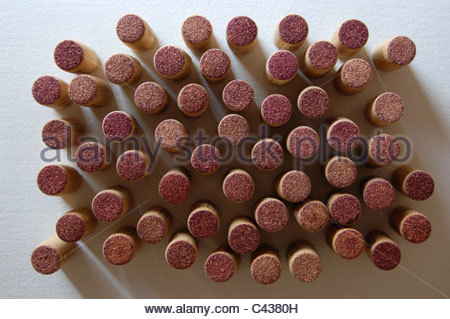 overhead tabletop studio shot closeup group of approximately 40 red wine corks standing on end natural light shadows - Stock Photo
