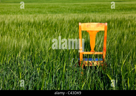 ... The restless chair on the barley field - Stock Photo & The restless chair on the corn field Stock Photo: 35917045 - Alamy