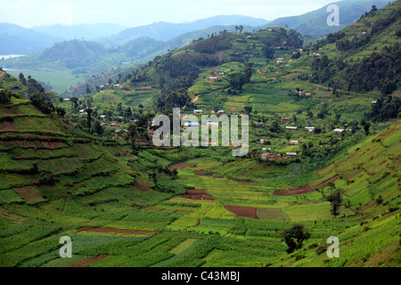 Africa, African, Travel, Nature, Landscape, Kisoro, Uganda, Sub-Saharan, East Africa, Scenic, landscape, travel, - Stock Photo