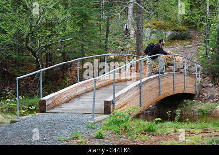 Appalachian Trail (Webster Cliff Trail ) in Crawford Notch State Park in Hart's Location, New Hampshire; part of - Stock Photo