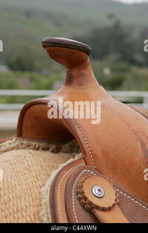 Horn on Western saddle, close-up - Stock Photo