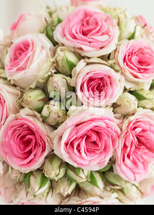 Pink rose bouquet, close-up - Stock Photo