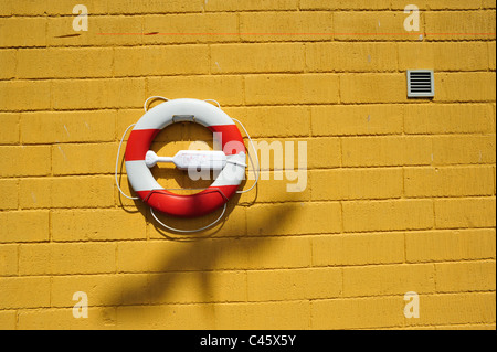 Lifebelt on the wall with bird shadow - Stock Photo