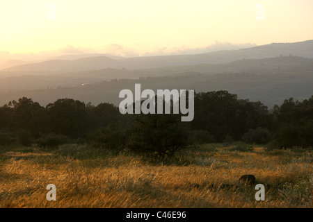 Photograph of the B'atiha ruins in the southern Golan Heights at sunset - Stock Photo