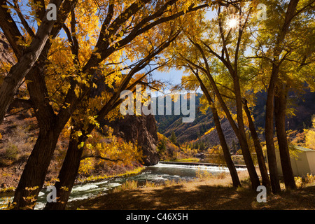 Scenic brilliant fall color of panoramic autumn leaf display and river in Black Canyon of the Gunnison National - Stock Photo