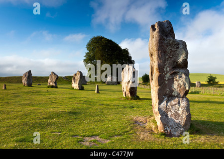 The Avebury Stones - Wiltshire - Stock Photo
