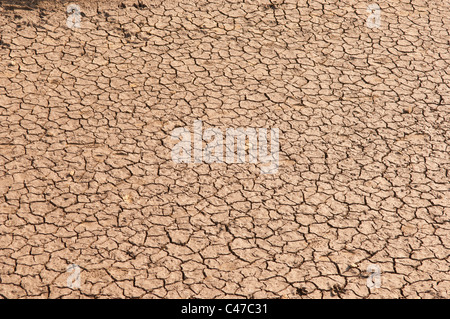 A Uk drought leaves the muddy pond dry and cracked - Stock Photo