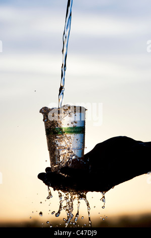 Pouring water into a Biodegradable, Compostable plastic cup made from plant material. Silhouette - Stock Photo