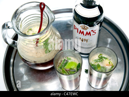 Pimms No 1 and lemonade with fruit and mint, London - Stock Photo