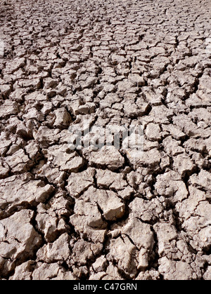 cracked and dry mud in a river bed, vertical - Stock Photo
