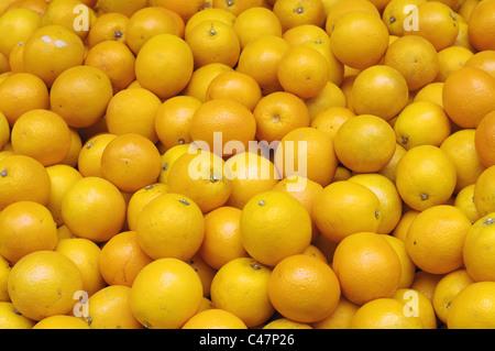 Close-up of grapefruits - Stock Photo