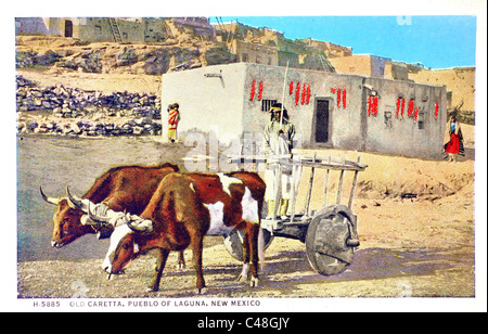 1930's vintage postcard of an old caretta (cart) being pulled by two oxen and driven by a Native American of the - Stock Photo