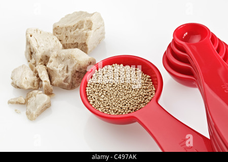 Fresh Yeast and  a Spoon of Dried Yeast - Stock Photo