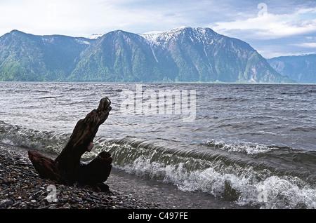 Teletskoye lake and Tualok Mount.  Altai. Siberia. Russia