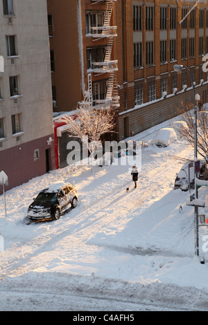 walking dog in snow covered East Village New York City - Stock Photo