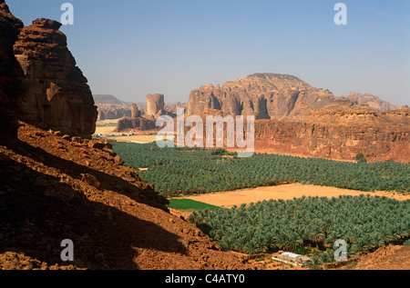 Saudi Arabia, Madinah, Al-Ula. Date plantations lie amidst picturesque scenery in the oasis surrounding Al-Ula. - Stock Photo