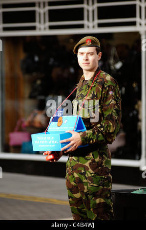 Young soldier in uniform collecting money for the royal British, Legion Poppy Appeal, Aberystwyth, Wales. - Stock Photo