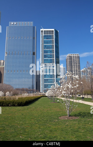 View of Blue Cross Blue Shield Tower and 340 on the Park skyscrapers from Daley Bicentennial Plaza in Chicago's - Stock Photo