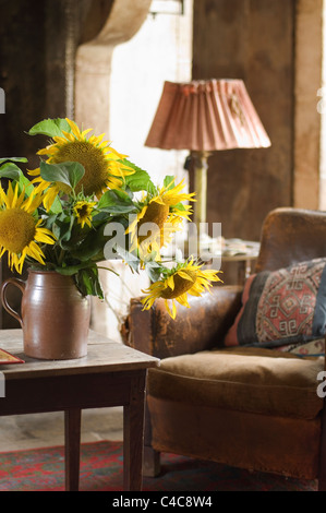 Large sunflower heads in a terracotta jug in rustic farmhouse living room with distressed leather armchair - Stock Photo