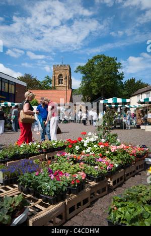 Market Rasen Gardeners Market, held in the Market Square, Market Rasen, Lincolnshire, England, UK. - Stock Photo