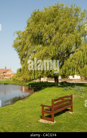 english village green common land picturesque traditional nun moor monkton north yorkshire pond willow trees - Stock Photo