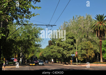 Blue sky green trees avenue view cars and trolley-bus at cross-roads (Boulogne Sur Mer Libertador Avenues), Mendoza, - Stock Photo
