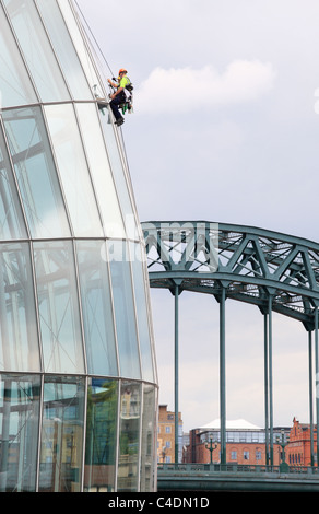 Window cleaners work by abseiling down the walls of the Sage concert hall in Gateshead, Tyne Bridge in background - Stock Photo