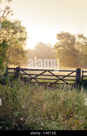 Peaceful english countryside at dawn, Lackford Lakes, Suffolk, UK - Stock Photo