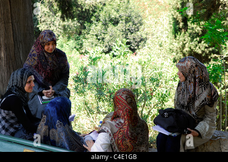 Students at American University of Beirut (AUB) chatting in campus grounds, Bliss Street, Ras Beirut, Lebanon. - Stock Photo