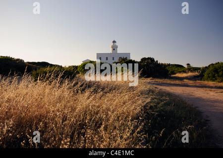 The Capo Ferro lighthouse from the field at twilight, Porto Cervo, Arzachena, Sardinia, Italy - Stock Photo