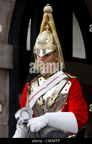 horse guards - Stock Photo