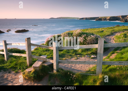 Wooden stile on Cornish clifftops near Porthcothan Bay, South West Coast Path long distance footpath, Cornwall, - Stock Photo