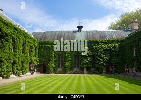 Chapel Quad, Lincoln College, Oxford University, Oxford,  England, UK, United Kingdom, GB, Great Britain, British - Stock Photo