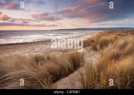 Windswept sand dunes on the beach at Studland Bay, Dorset, England. Winter (February) 2011. - Stock Photo