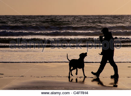 People walking their dog on a beach at sunset - Stock Photo