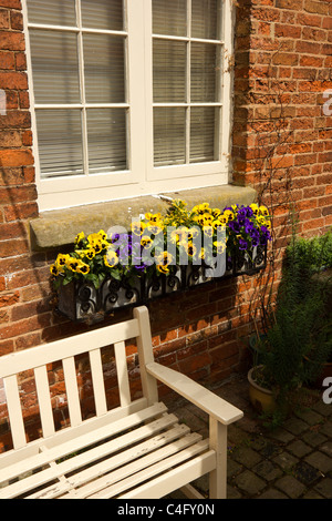 Pansies in black wrought iron window box on red brick wall, Ferrers Centre,Staunton Harold, Ashby de la Zouch, Leicestershire,UK - Stock Photo
