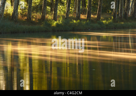 the Canal du Midi nr Castelnaudary, Aude, Languedoc-Rousillon, France - Stock Photo