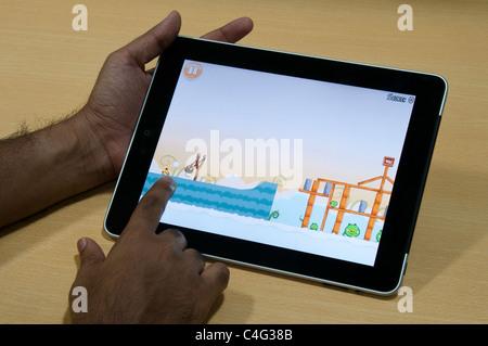 Angry bird game on iPad - Stock Photo