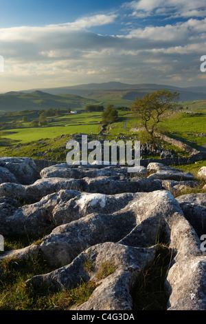 Winskill Stones, Ribblesdale, Yorkshire Dales National Park, England, UK