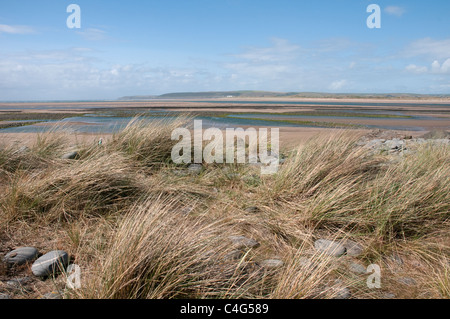 A view across the the estuary of the rivers Taw and Torridge, from Northam Burrows towards Saunton and Braunton - Stock Photo