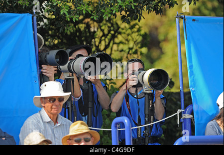 Photographers with long lenses at the Aegon International tennis championships in Eastbourne UK 2011 - Stock Photo