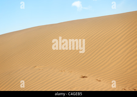 View on the rippled sand dunes in the desert. Natural light and colors - Stock Photo