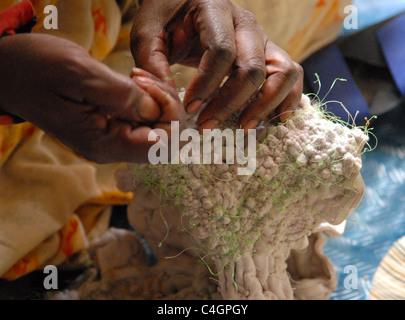 Close-up hands of a woman sewing traditional malafa dress Nouakchott Mauritania - Stock Photo