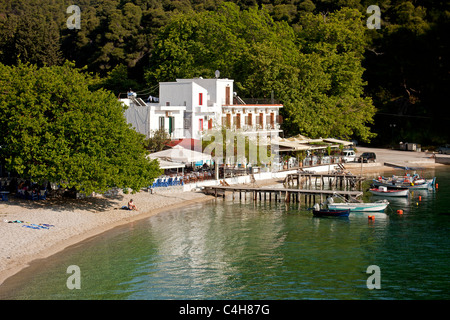 harbour and beach at the small fishing village of Agnontas, Skopelos Island, Northern Sporades, Greece - Stock Photo
