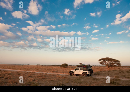 Off Road Vehicle in Deception Valley, Central Kalahari Game Reserve, Botswana - Stock Photo