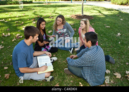 Multi ethnic Ethnically diverse group of teens study discussion together using mobile phone iPhone iPad devices. - Stock Photo