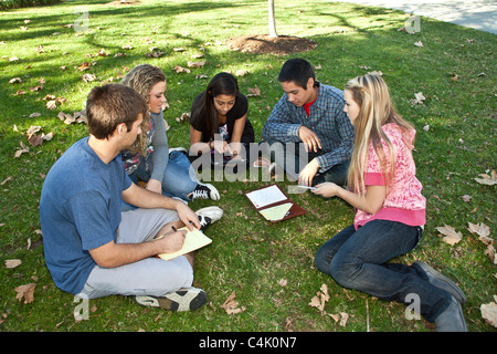 Multi ethnic racial  minority Ethnically diverse group teens study together using iphone  mobile phone phones devices - Stock Photo