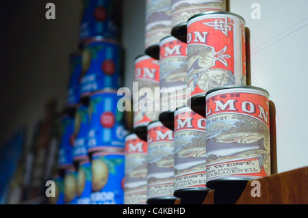 Tins of salmon stacked in a old fashioned grocers shop - Stock Photo