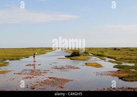 Stiffkey Saltmarshes, Norfolk, England, UK - Stock Photo