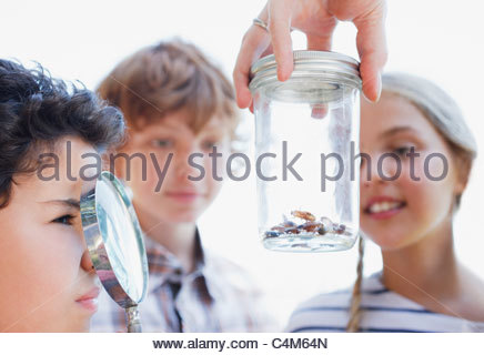 Kids looking at insects in jar with magnifying glass - Stock Photo